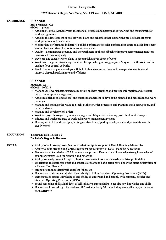 sample resume for demand planner