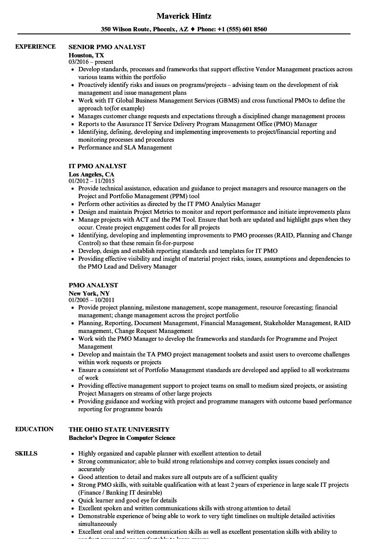pmo consultant sample resume
