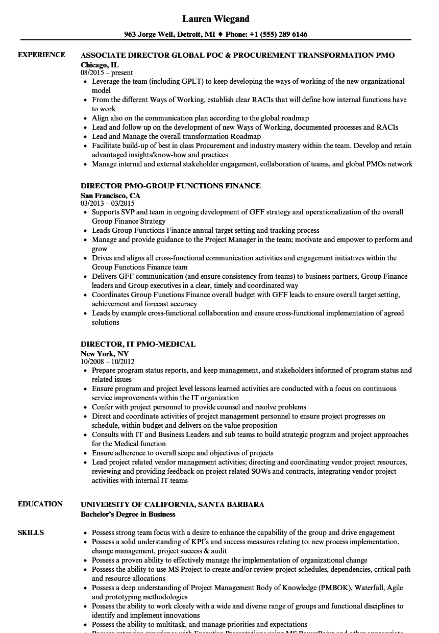 pmo project manager resume sample