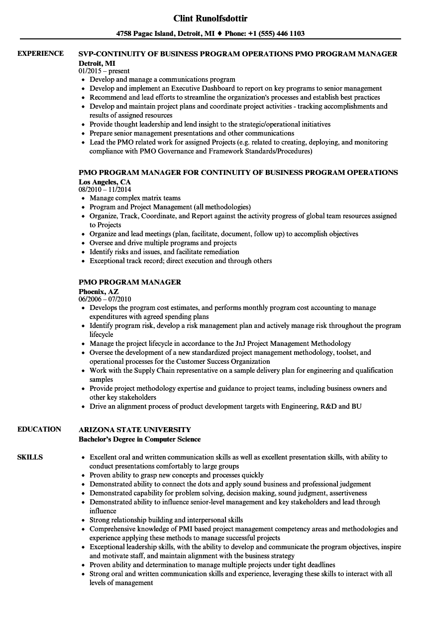 sample resume project manager examples