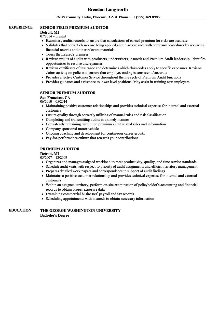auditor resume sample