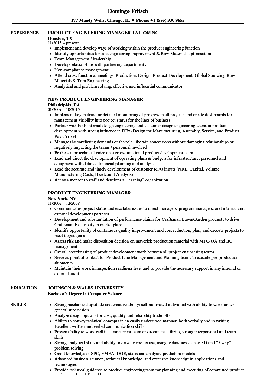 development manager resume sample