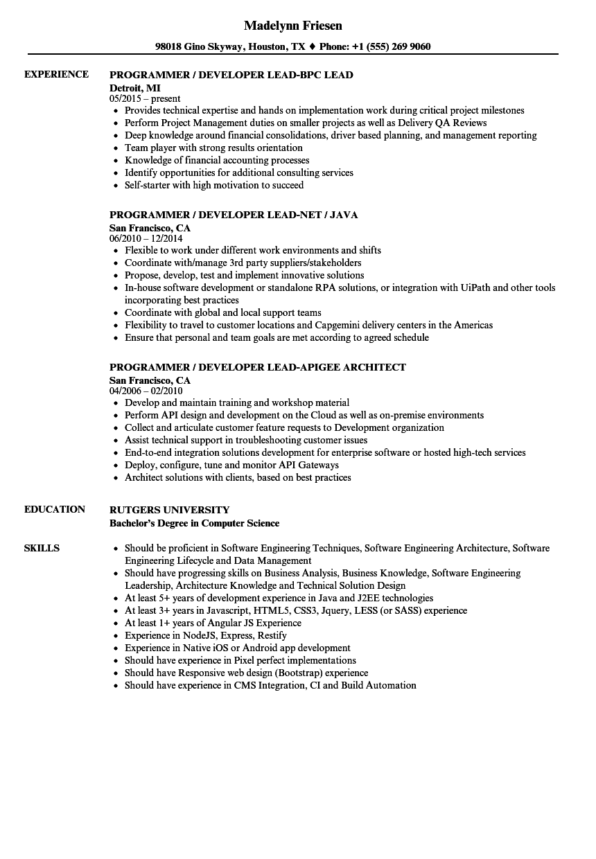 resume examples for programmer