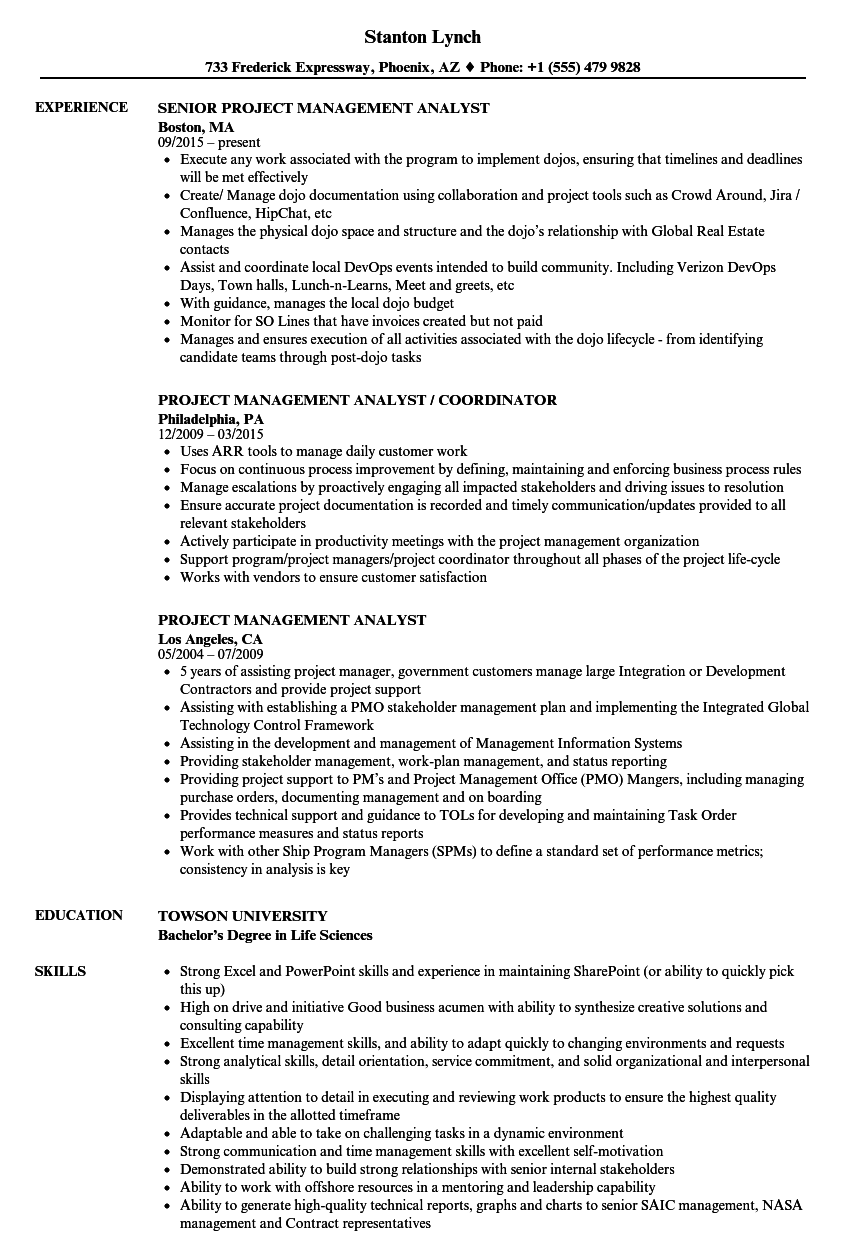 project management analyst sample resume