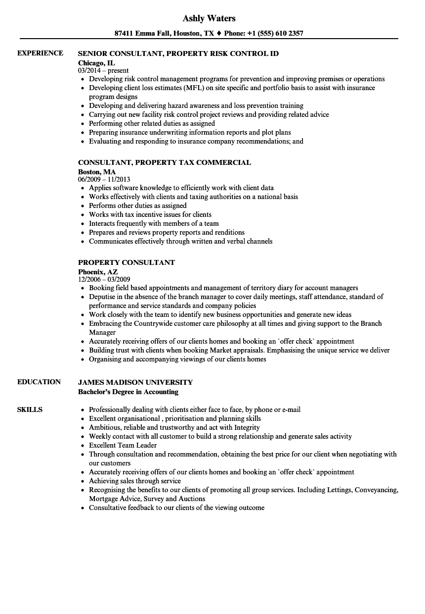property accounting resume examples