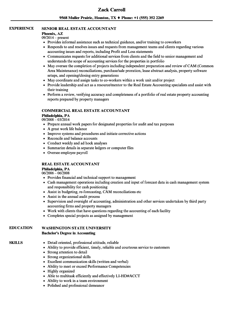 sample resume for real estate accountant