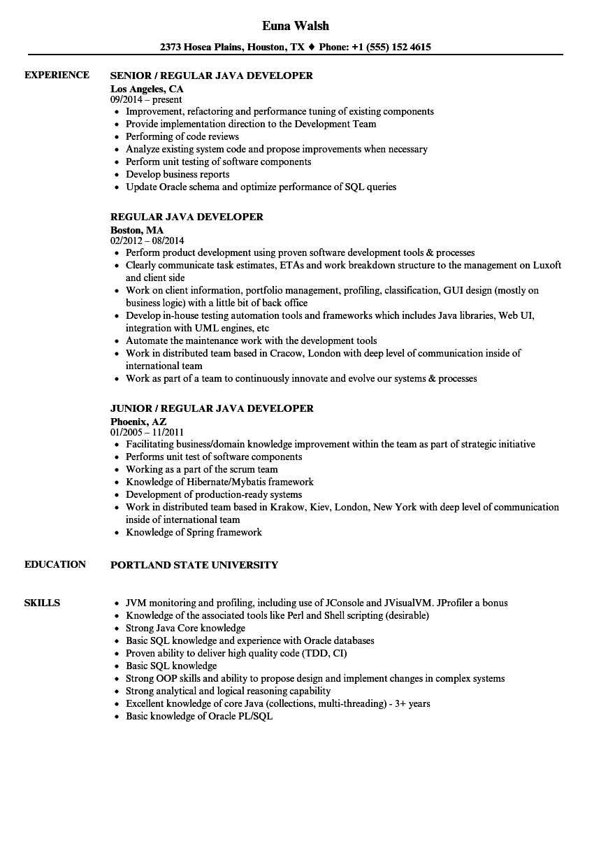 regular resume examples