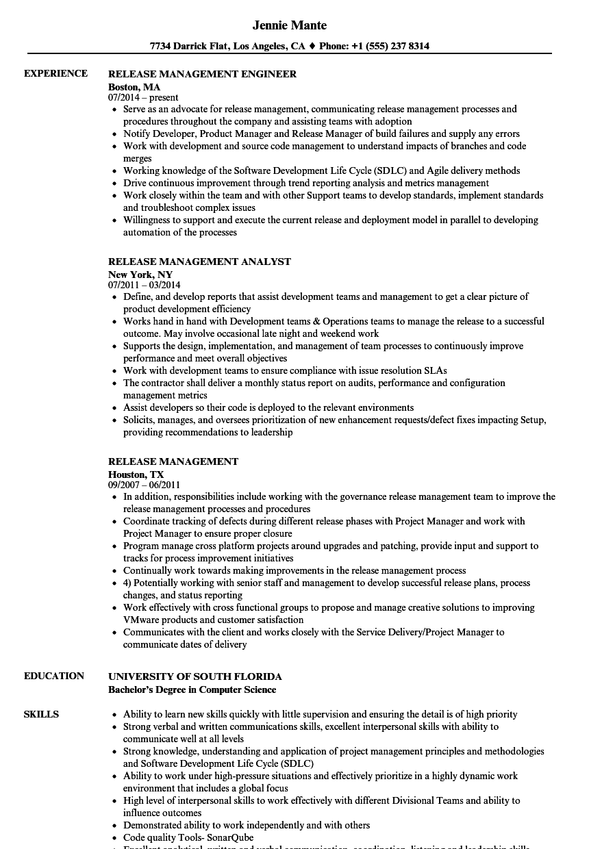 servicenow architect sample resume