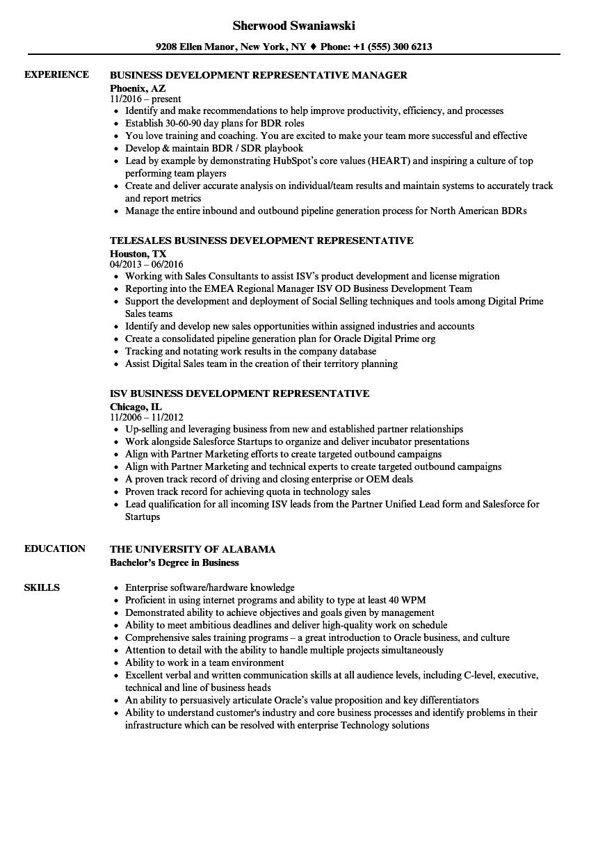 business development sample resume