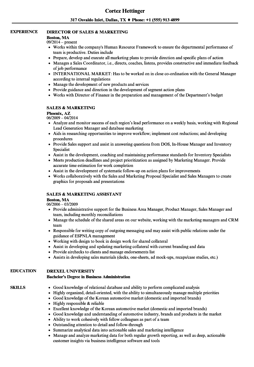 resume samples sales and marketing