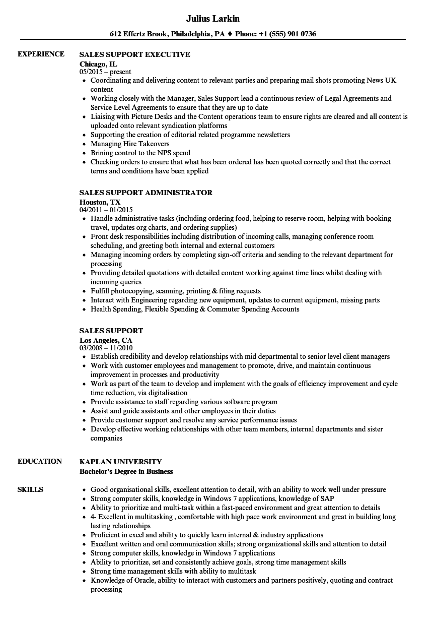 resume sample sales support