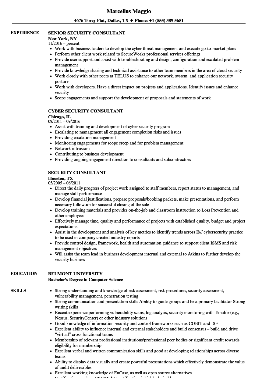 security consultant cv