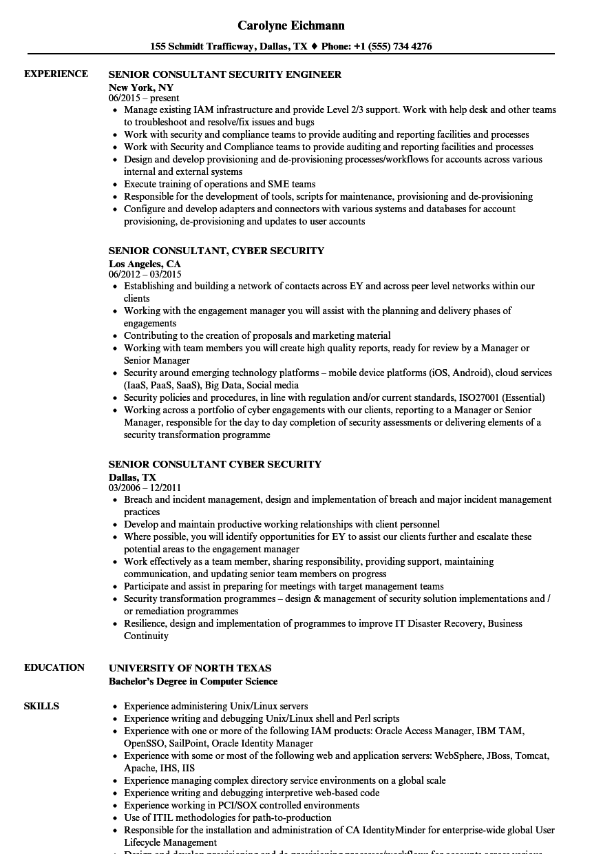 sample resume consultant analyst