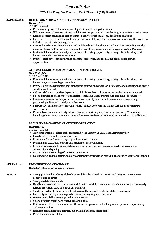 sox consultant resume sample