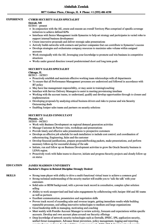 resume work experience sales