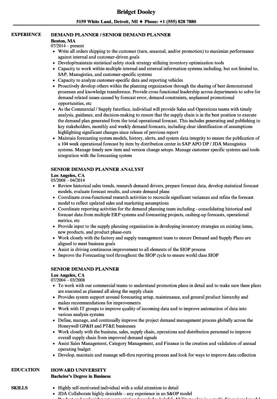 senior planner resume sample