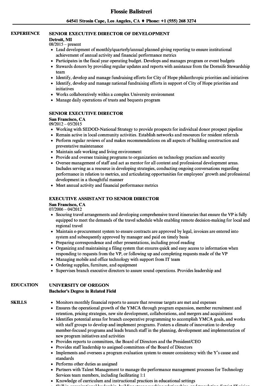 executive director resume sample