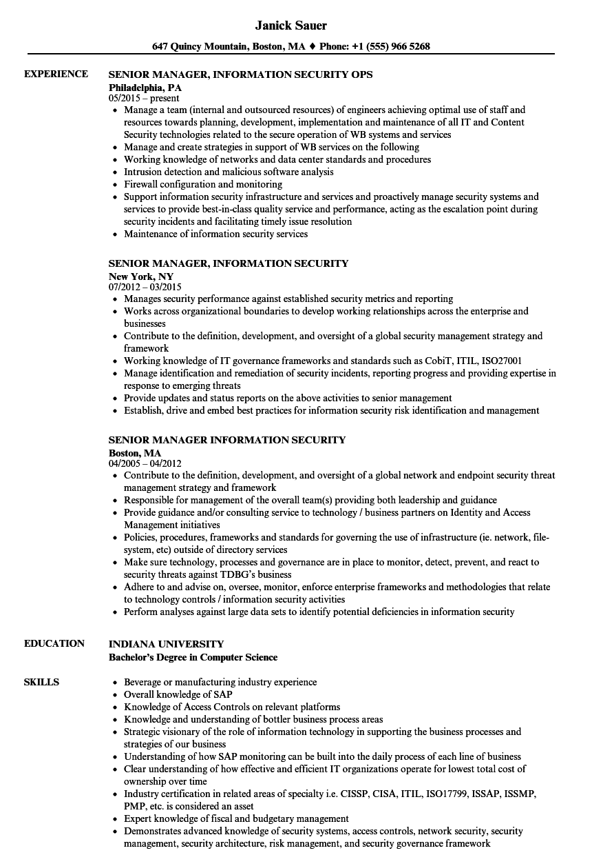 cissp sample resume pdf