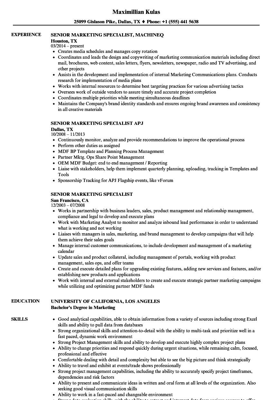 marketing resume job skills