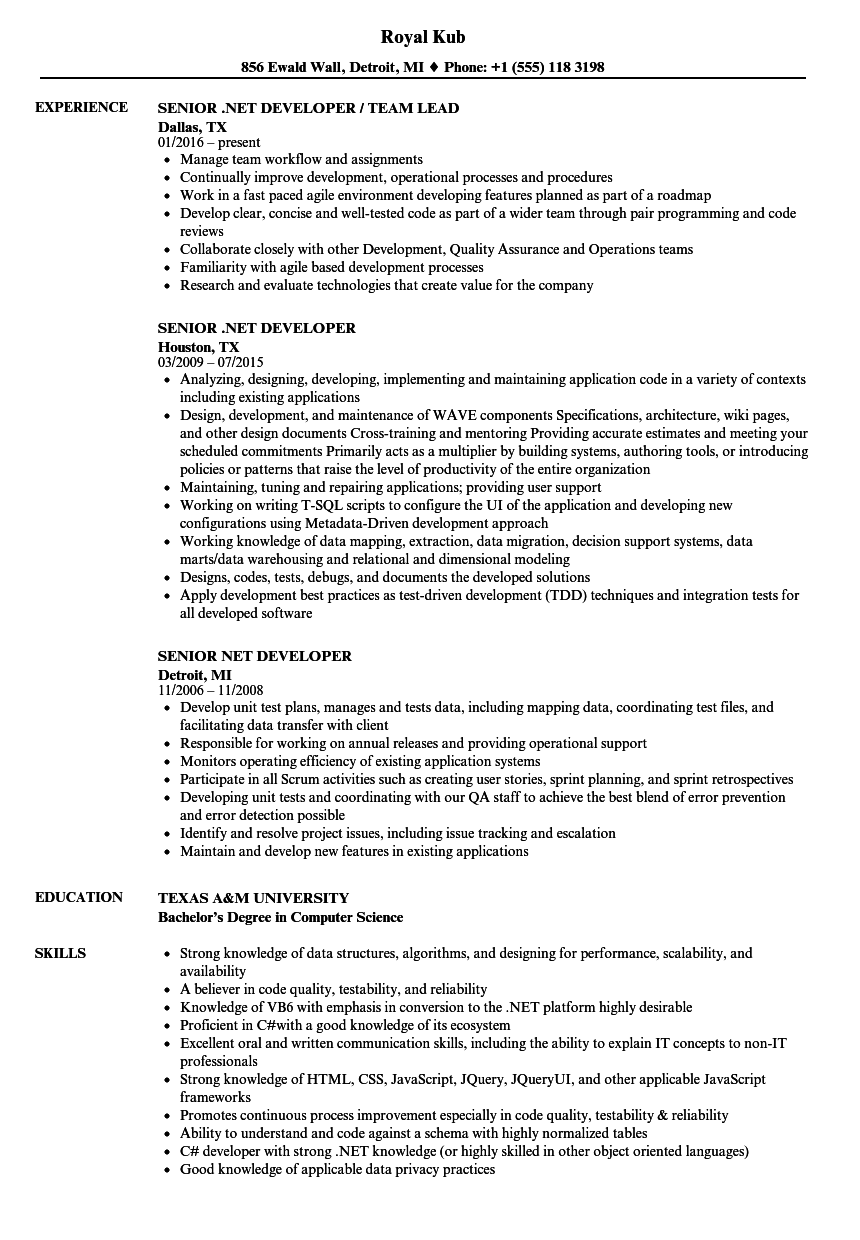 senior web application developer resume sample