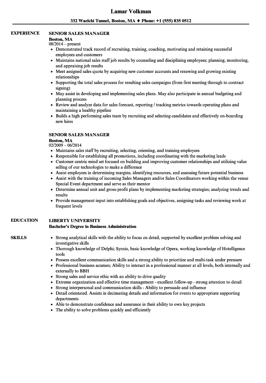 senior sales manager resume examples