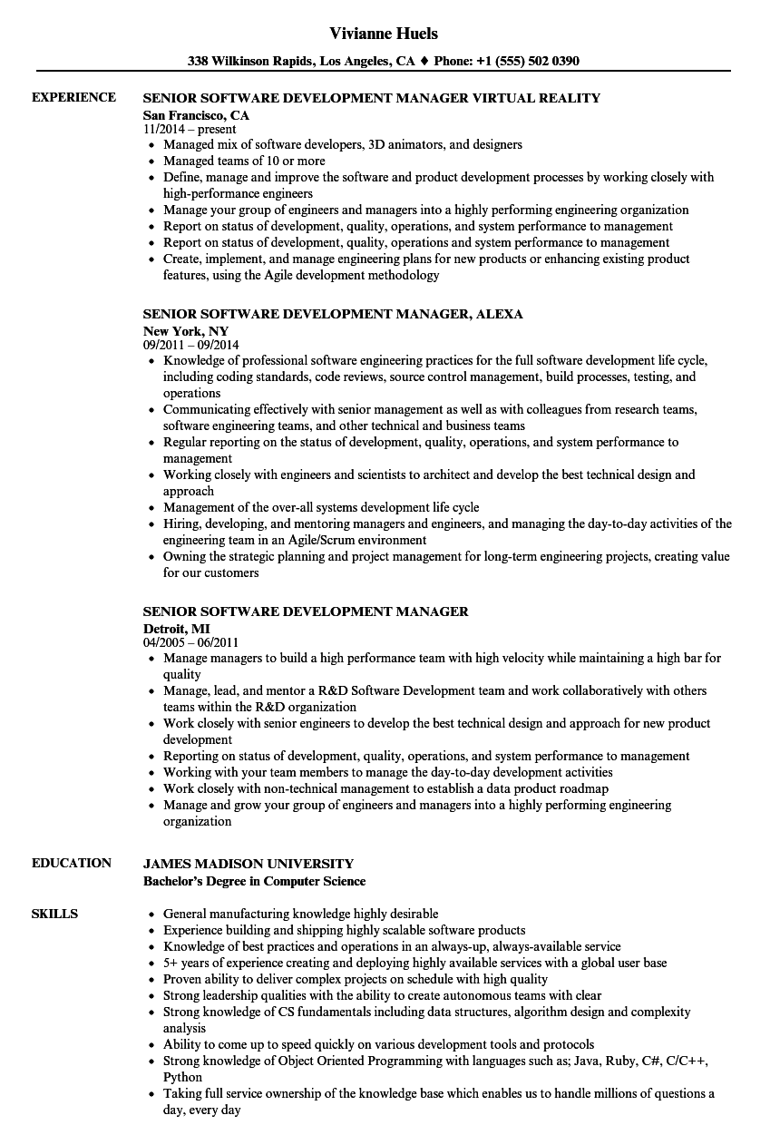development manager resume examples