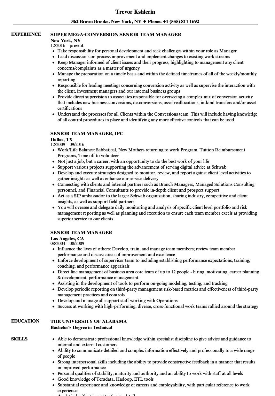 resume examples senior management