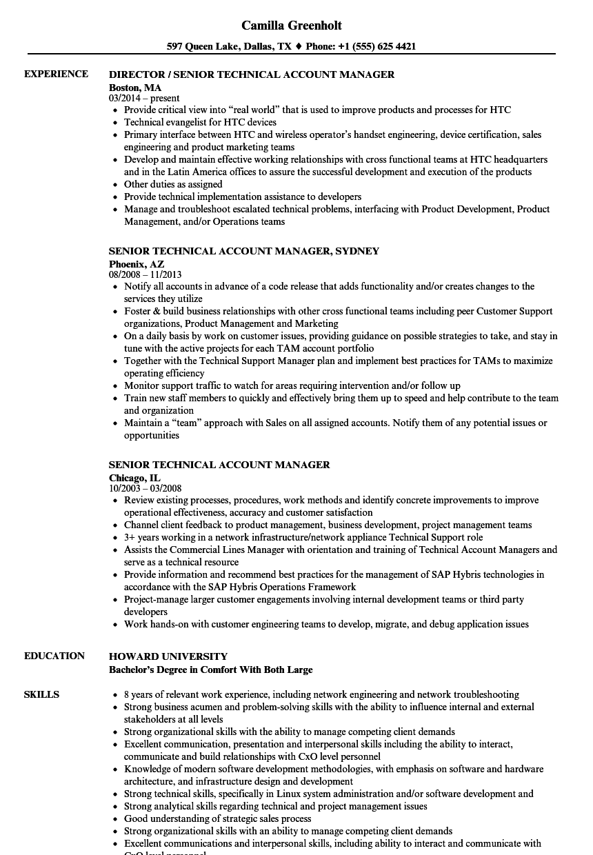 technical account manager resume sample