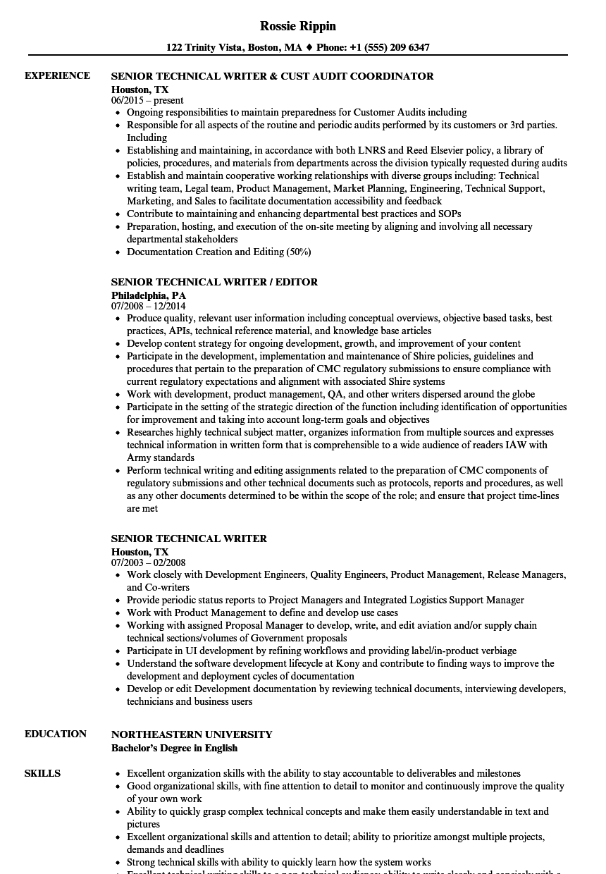resume objective technical writer example