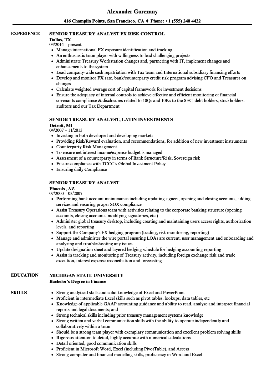 resume examples for treasurer for a club