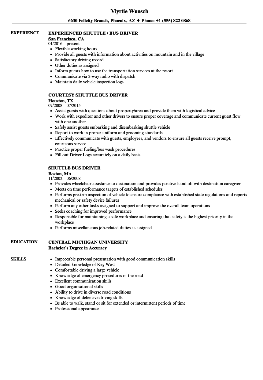 lead driver resume sample
