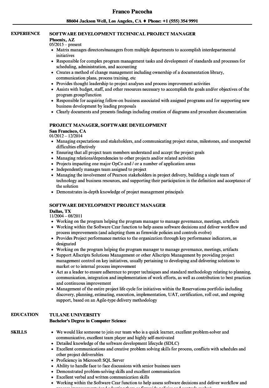 software development manager resume template