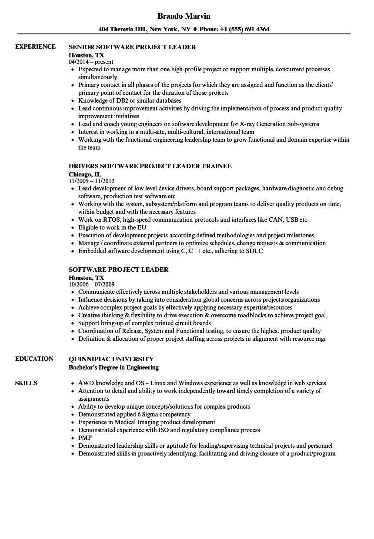perl resume samples