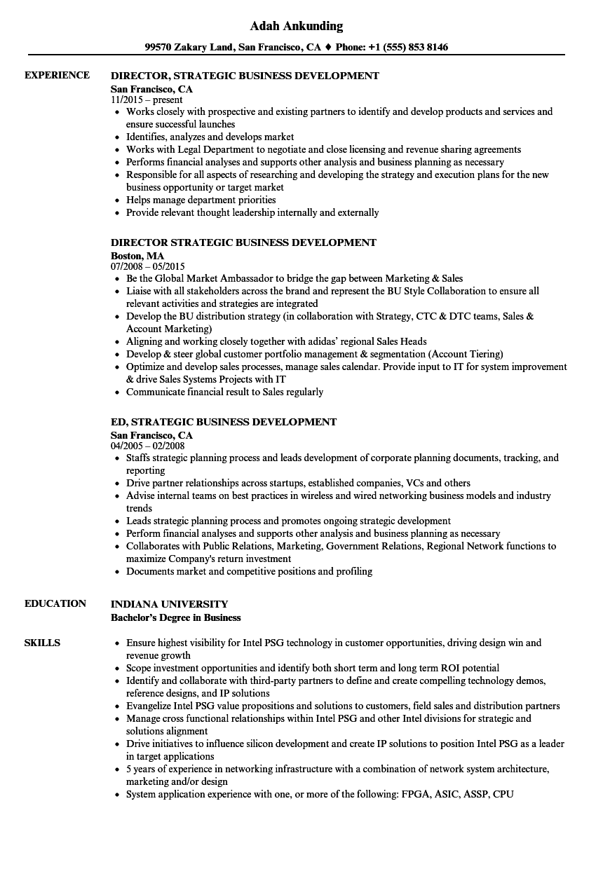 software development director resume sample