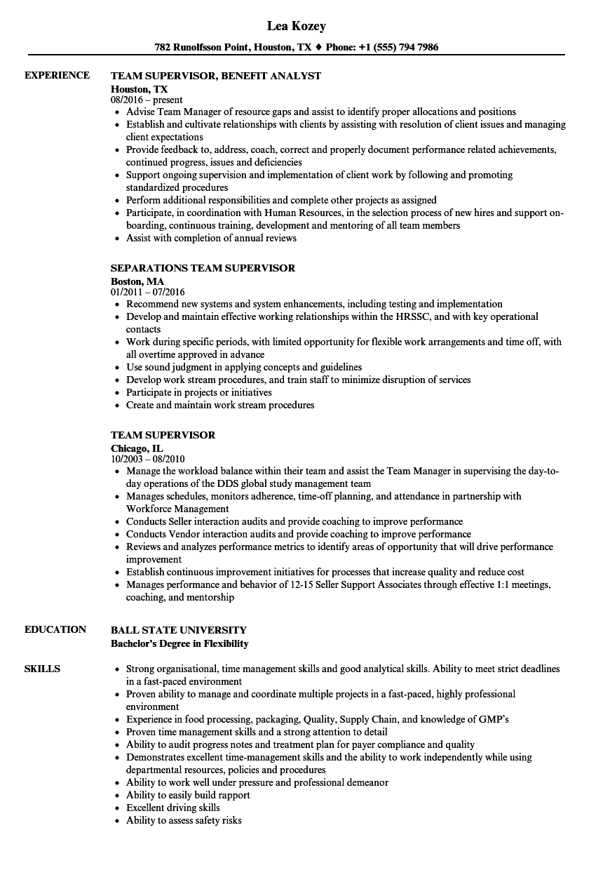 team supervisor resume examples