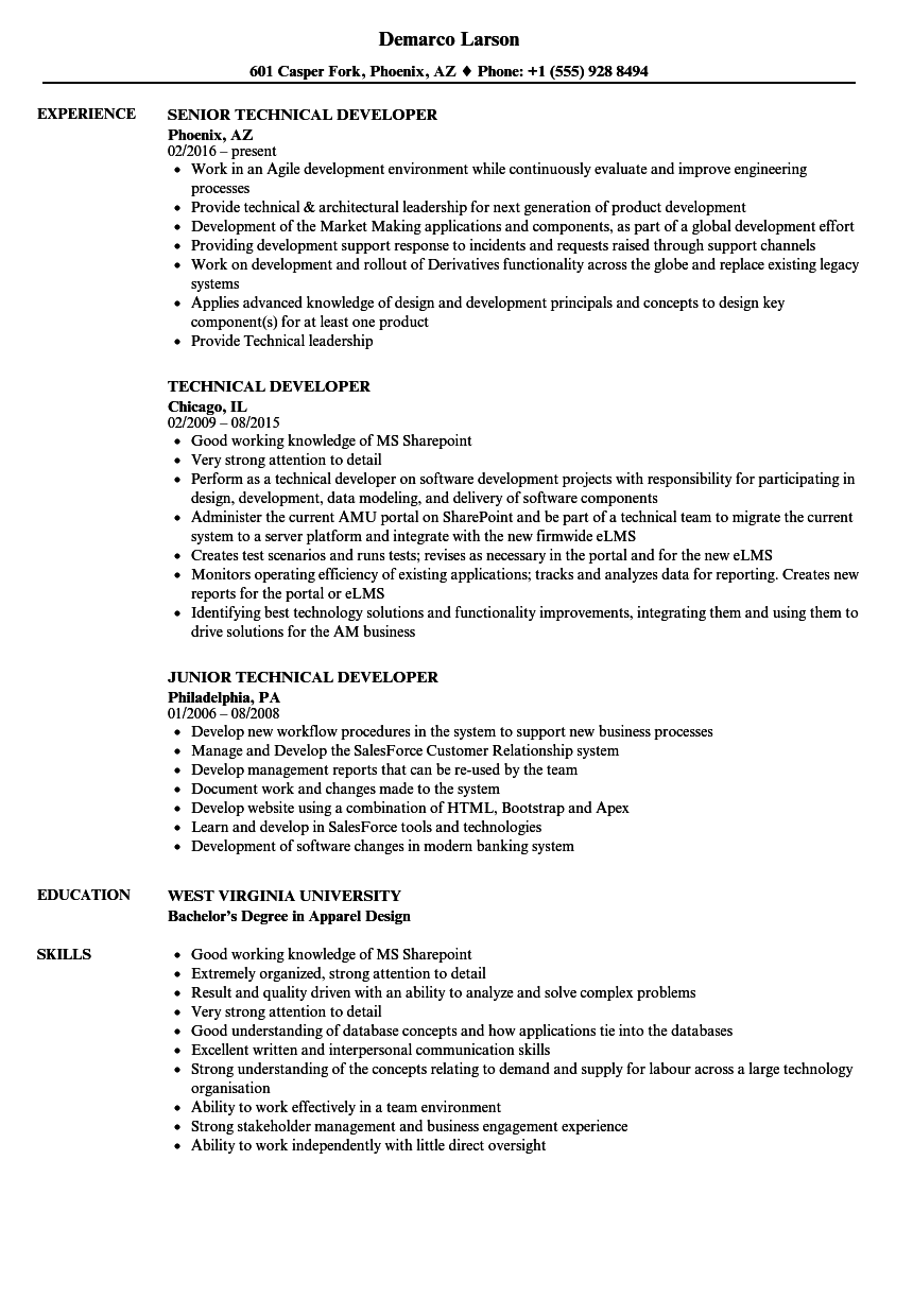 iib developer resume samples