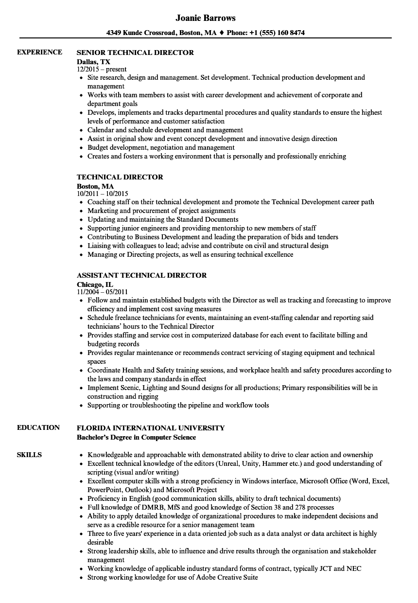 sample it project director resume