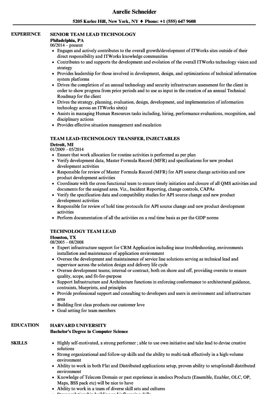 resume samples for technology lead