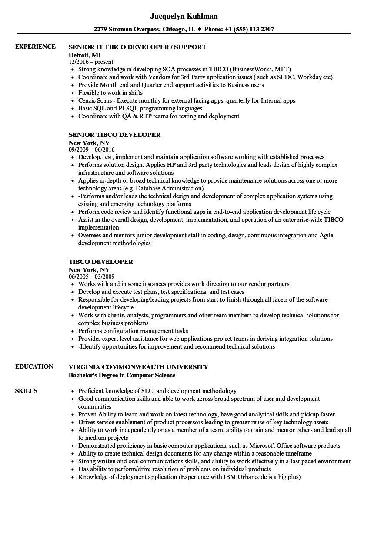 sample resume biztalk developer