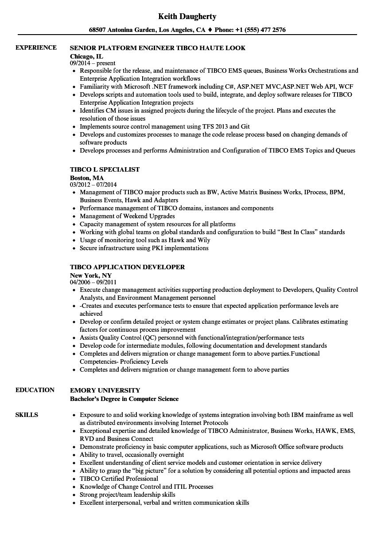 it developer sample resume
