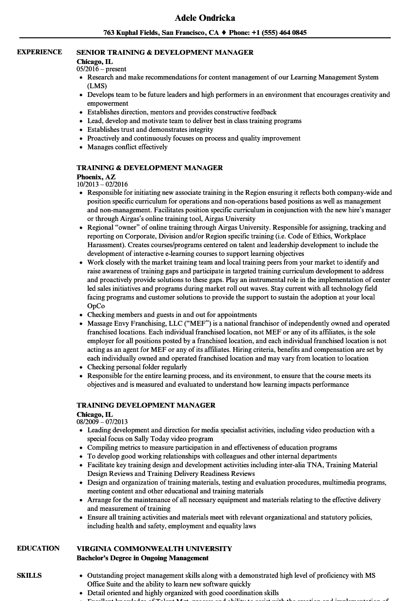 training manager and development manager resume sample