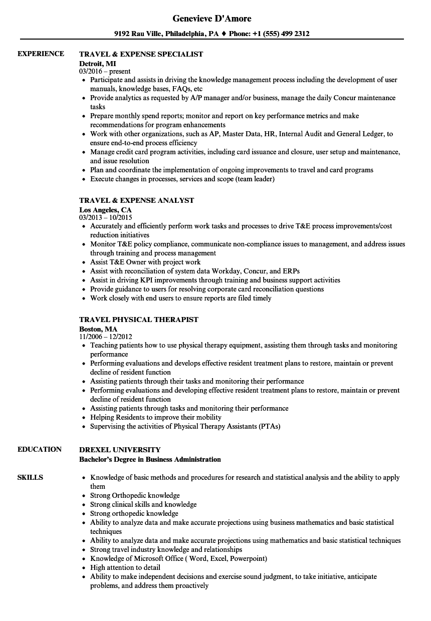 global work and travel resume template