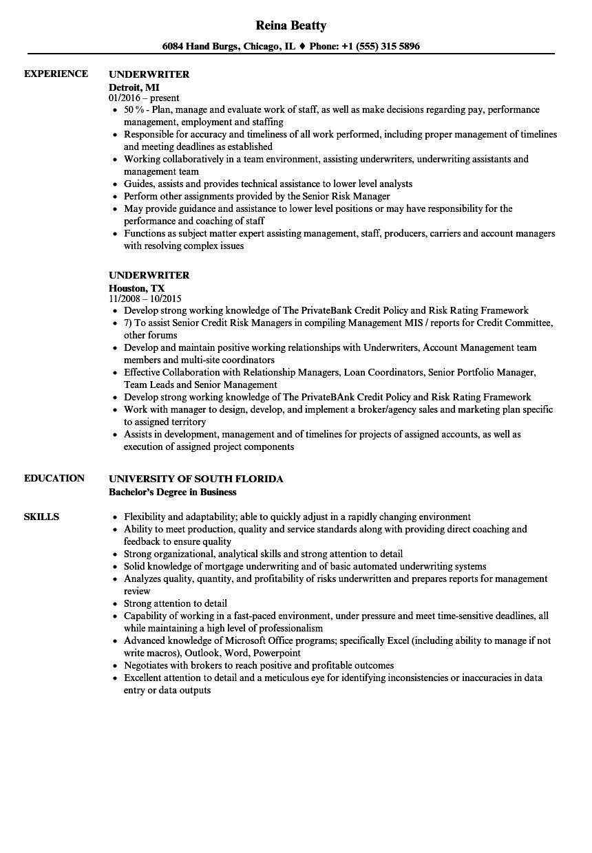 consumer loan underwriter resume sample