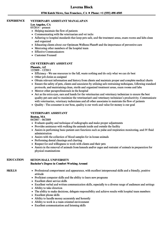 veterinary receptionist resume example