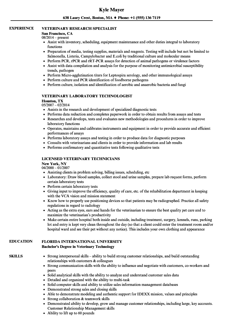 equine care resume sample