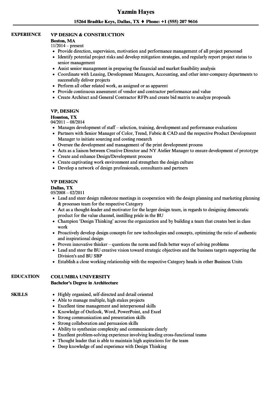 sample resume vp accounting