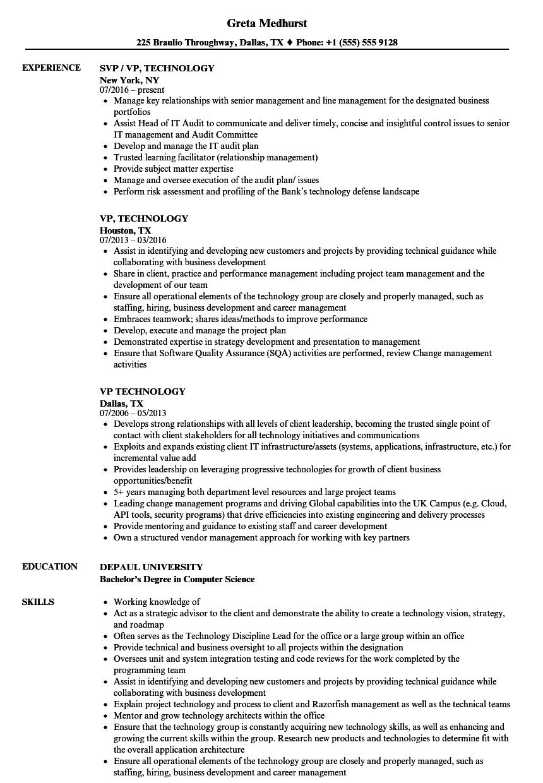 sample vp of technology resume