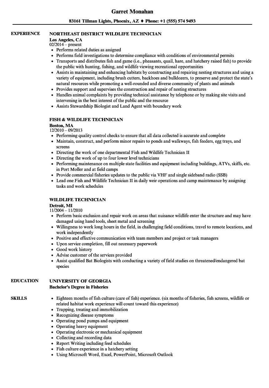 resume objective example field technician