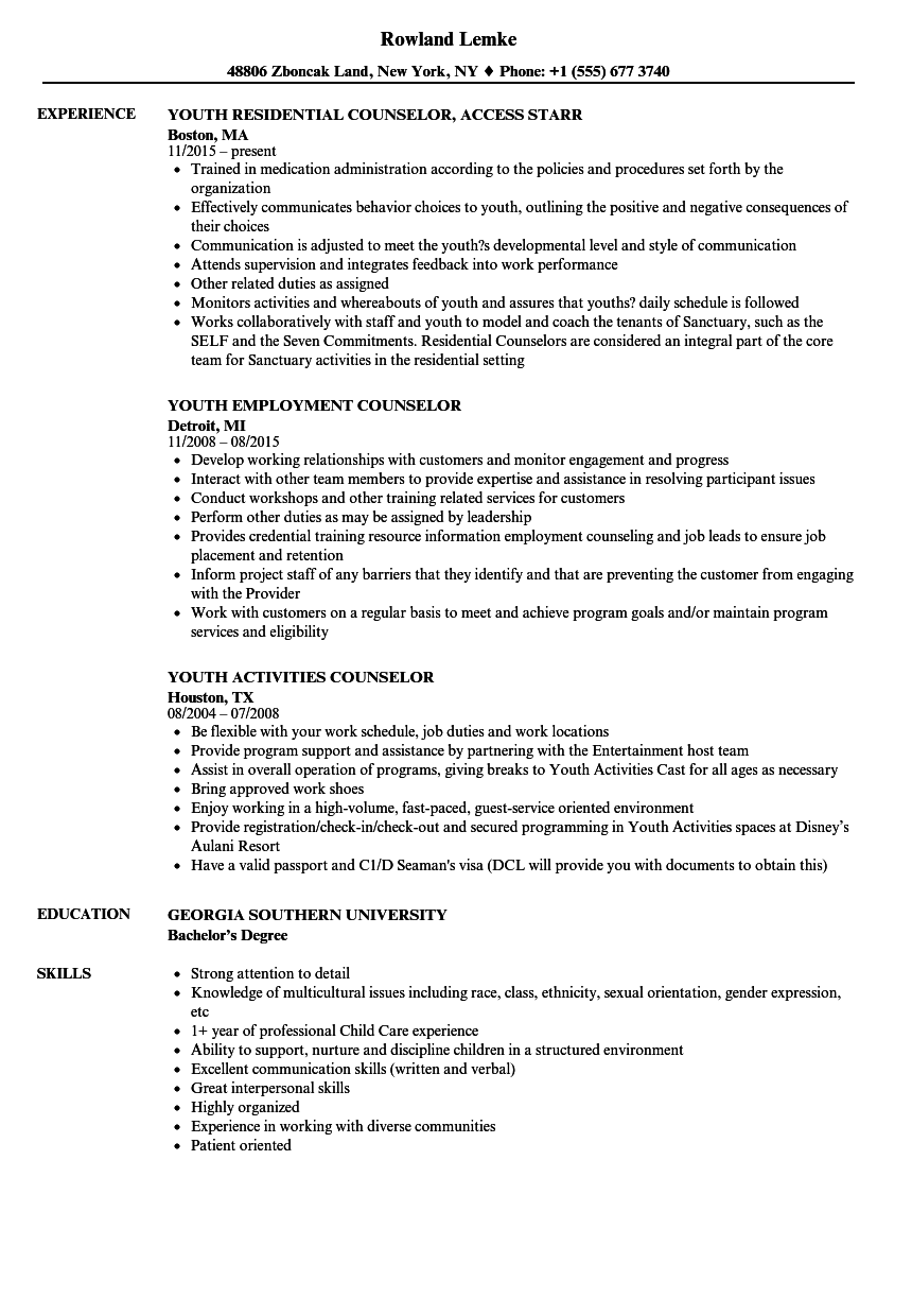 youth counselor job description resume sample