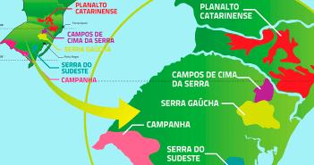 vinho-brasileiro-e-bom
